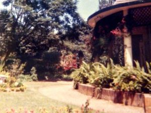 Le jardin des Cardon, avenue Tanganika et avenue Delcommune