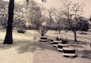 Le jardin de Laure